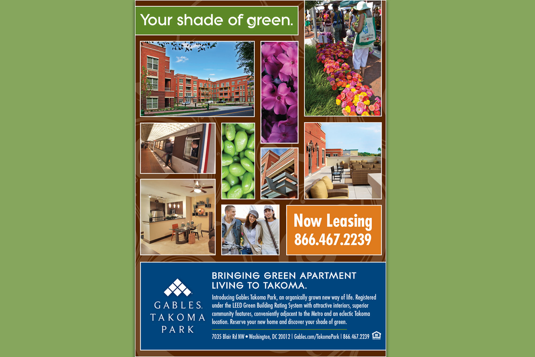 Gables Takoma Park Collateral - Flyer