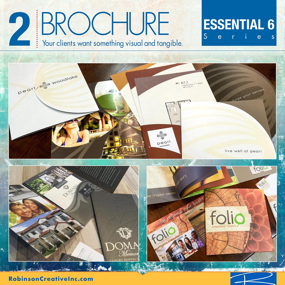The Essential 6 - Brochure