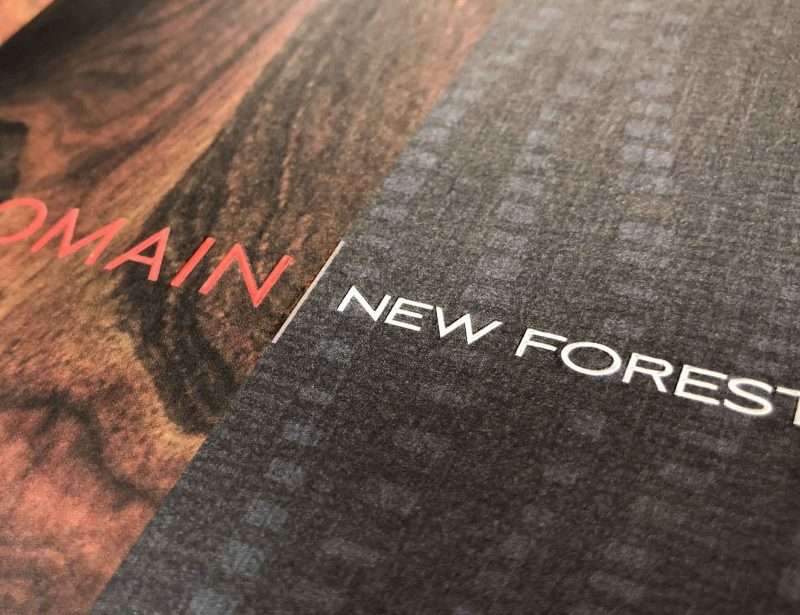 Domain New Forest Apartments Branding Collateral with Embossing