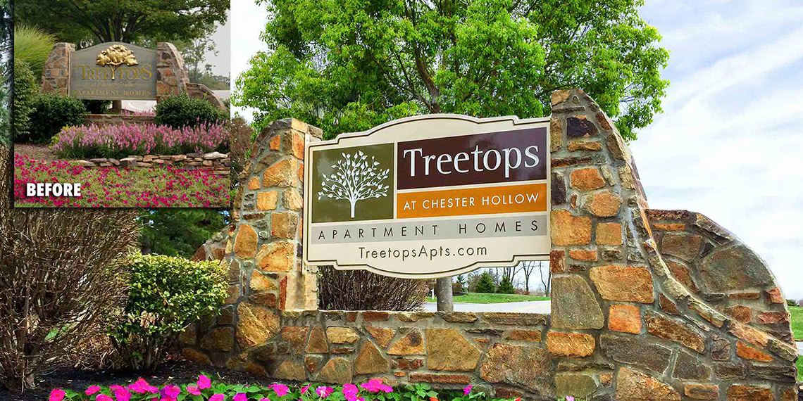 Treetops at Chester Hollow
