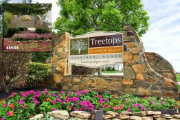 Treetops At Chester Hollow Apartment Homes Monument
